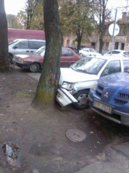 А так паркуется блондинка (2 фото)