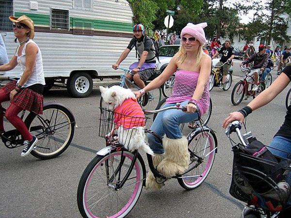 Парад необычных велосипедов (25 фото)