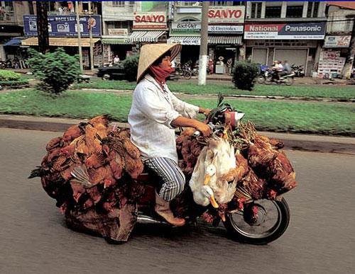 Китайские грузовые мопеды 7 фото