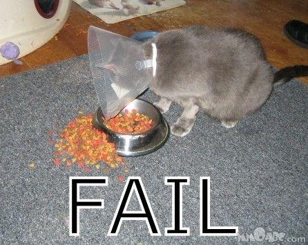 http://spynet.ru/images/2008/02/21/fail/fail_18.jpg