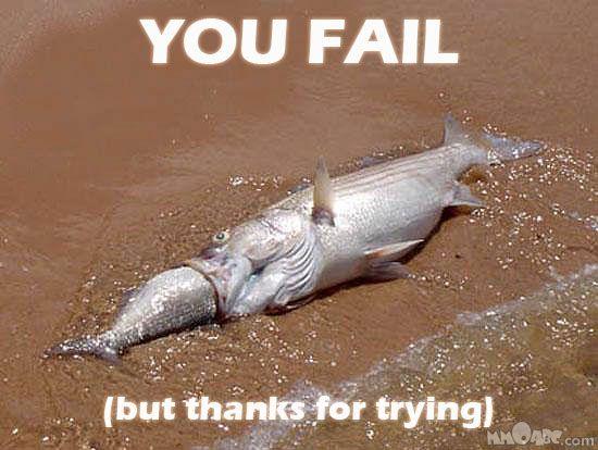 http://spynet.ru/images/2008/02/21/fail/fail_45.jpg
