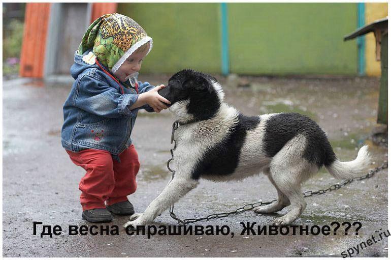 http://spynet.ru/images/2008/02/29/lastday/lastday_3.jpg