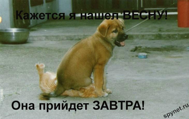 http://spynet.ru/images/2008/02/29/lastday/lastday_9.jpg