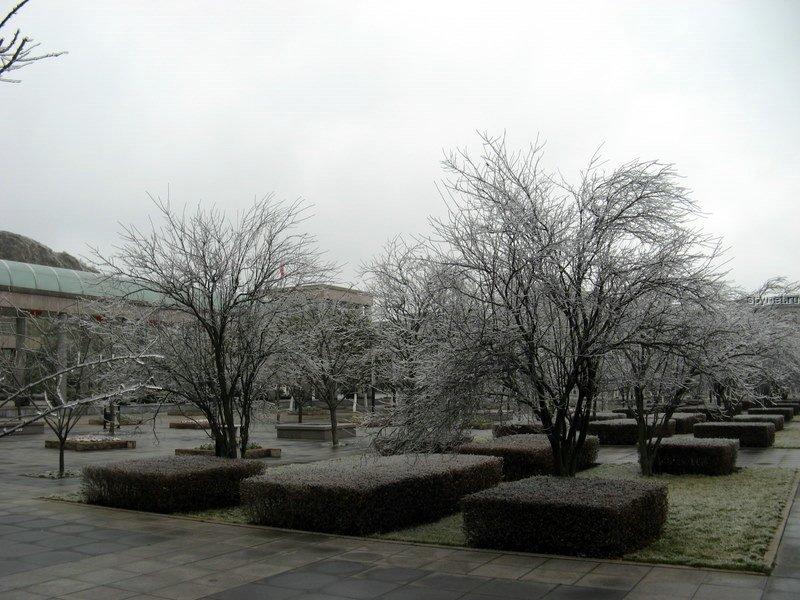 Ледяной дождь (18 фото) Просто супер