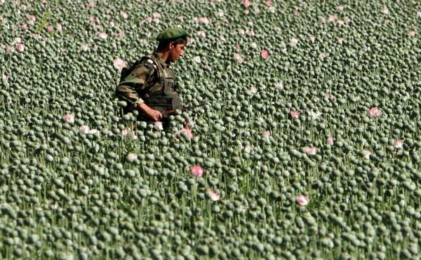 Один день обычной жизни в Афганистане (12 фото)