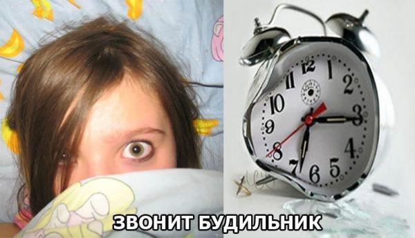 Разница между мужским утром и женским (14 фото)