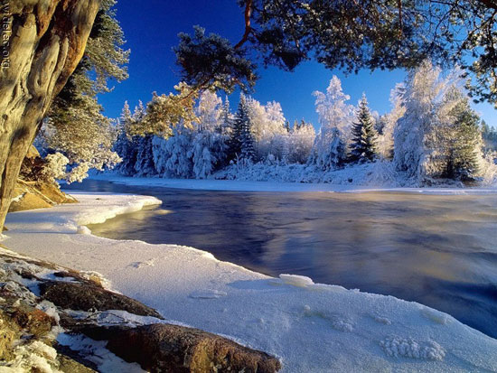 http://spynet.ru/images/2008/12/11/winter_snow/winter_snow_00.jpg