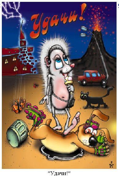 Смешные весёлые открытки 91
