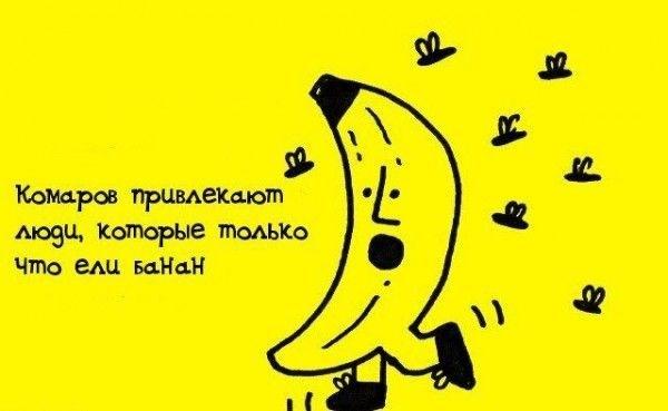 mini_fact_01.jpg