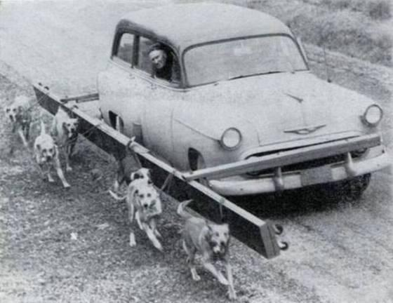 Странные и смешные старые фотографии