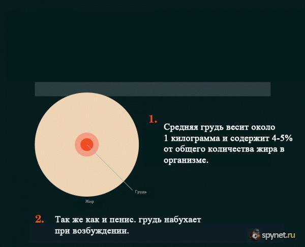 Факты о женской груди (8 скринов)