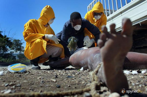 Холера на Гаити (17 фото)