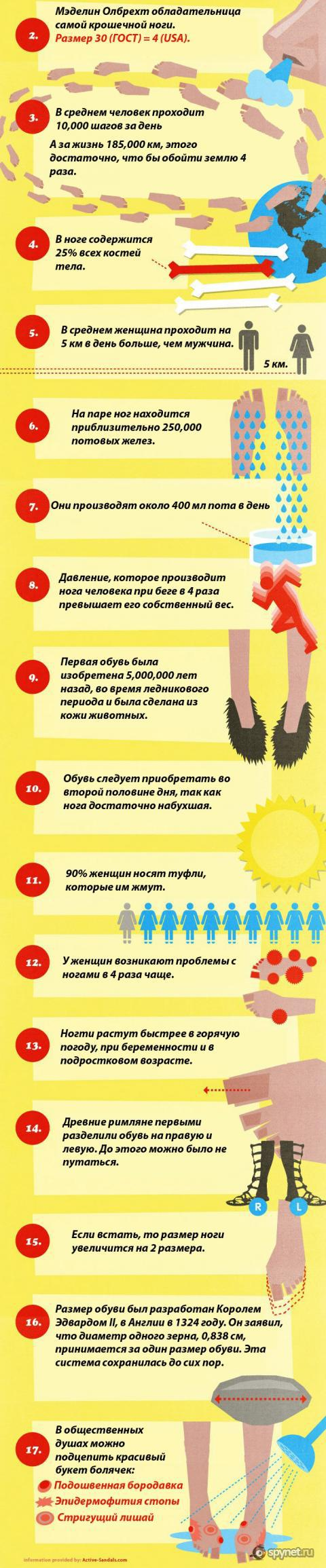 Факты о ногах.