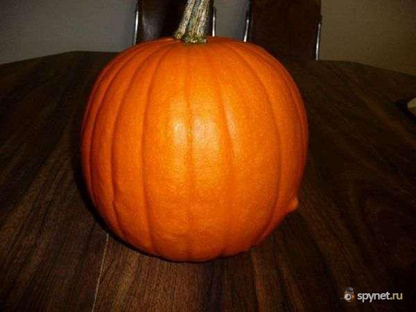 Креатив на тему хеллоуина