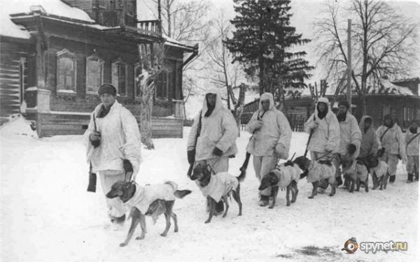 Они помогали защищать Ленинград.