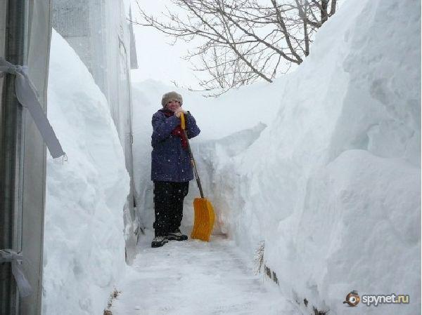 Жизнь под снегом (15 фото) / Интересное / SpyNet - Спайнет