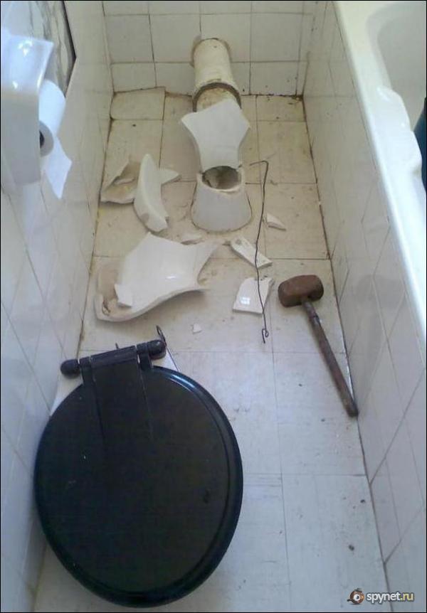 Сюрприз в туалете (4 фото)