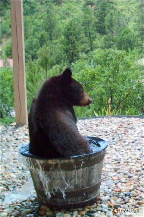 Кто ворует воду???