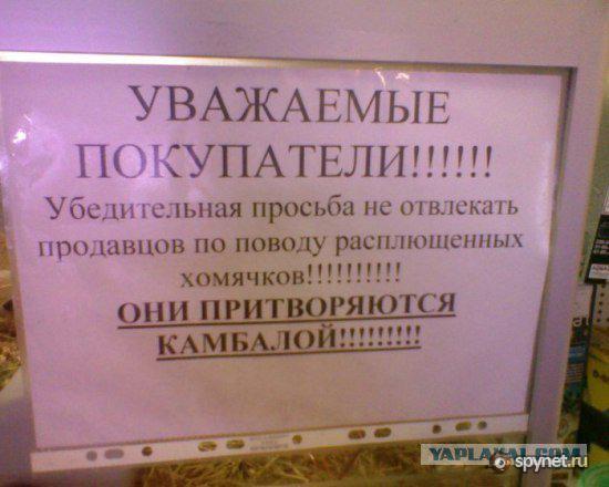 http://s.spynet.ru/uploads/images/0/6/3/6/2/1/2010/06/07/387c32.jpg