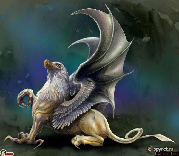 фото грифон птица