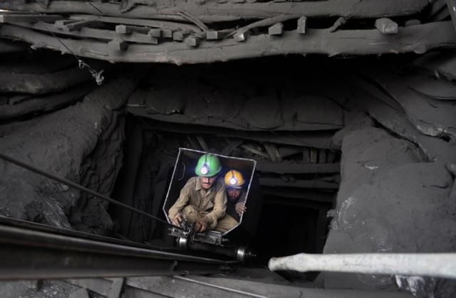 Подземная жизнь.