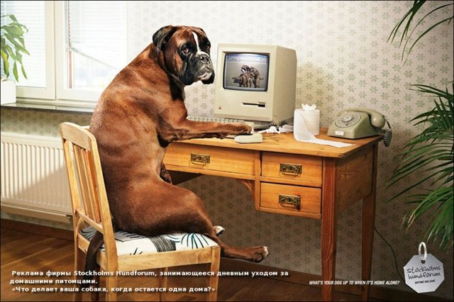 http://s.spynet.ru/uploads/posts/2012/0203/creative_advert_print_05.jpg