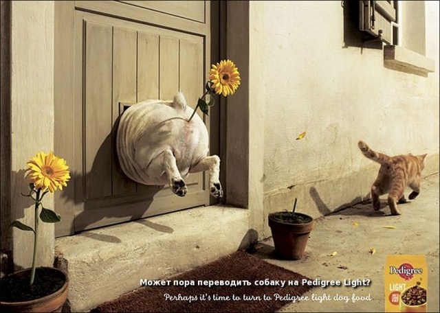 http://s.spynet.ru/uploads/posts/2012/0203/creative_advert_print_37.jpg