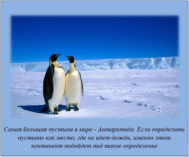 http://s.spynet.ru/uploads/posts/2012/0220/fakti_22.jpg