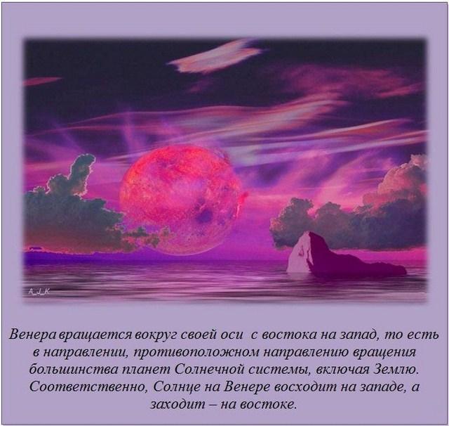 http://s.spynet.ru/uploads/posts/2012/0229/fakti_07.jpg