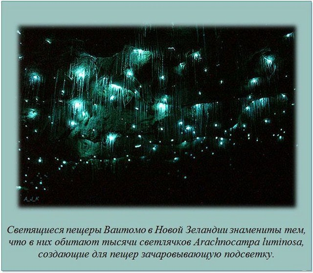 http://s.spynet.ru/uploads/posts/2012/0229/fakti_08.jpg