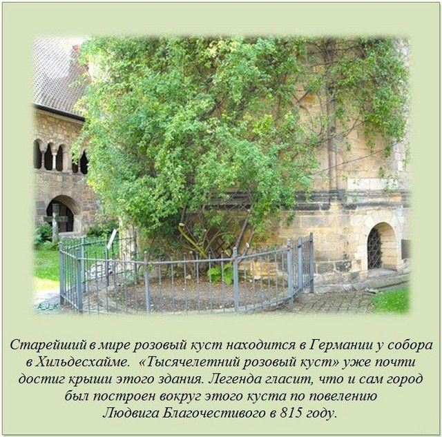 http://s.spynet.ru/uploads/posts/2012/0229/fakti_09.jpg