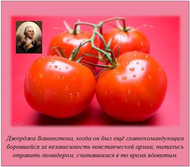 http://s.spynet.ru/uploads/posts/2012/0229/fakti_11.jpg