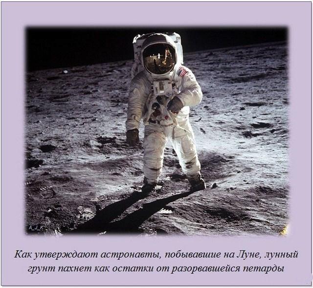 http://s.spynet.ru/uploads/posts/2012/0229/fakti_36.jpg