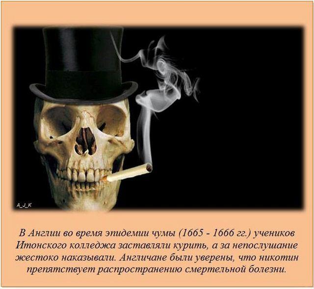 http://s.spynet.ru/uploads/posts/2012/0522/fakti_05.jpg
