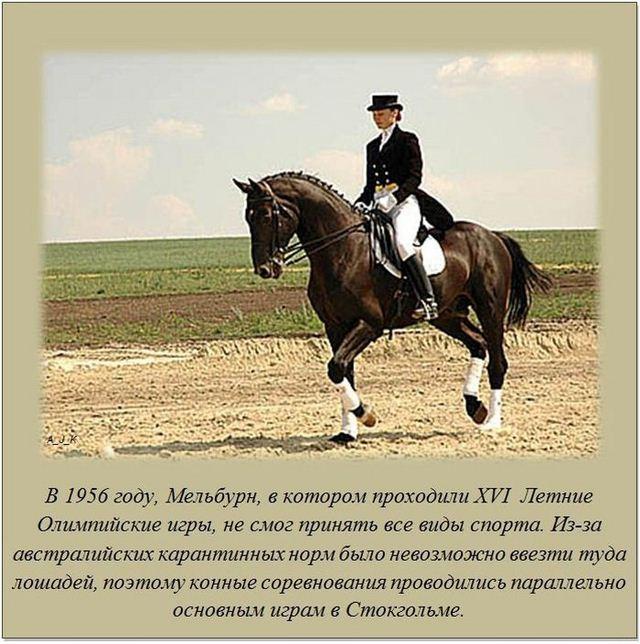 http://s.spynet.ru/uploads/posts/2012/0527/fakti_12.jpg