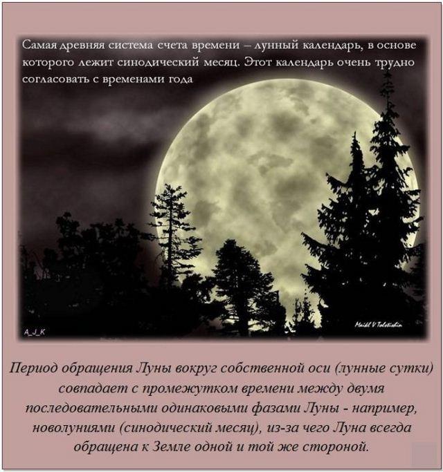 http://s.spynet.ru/uploads/posts/2012/0527/fakti_17.jpg