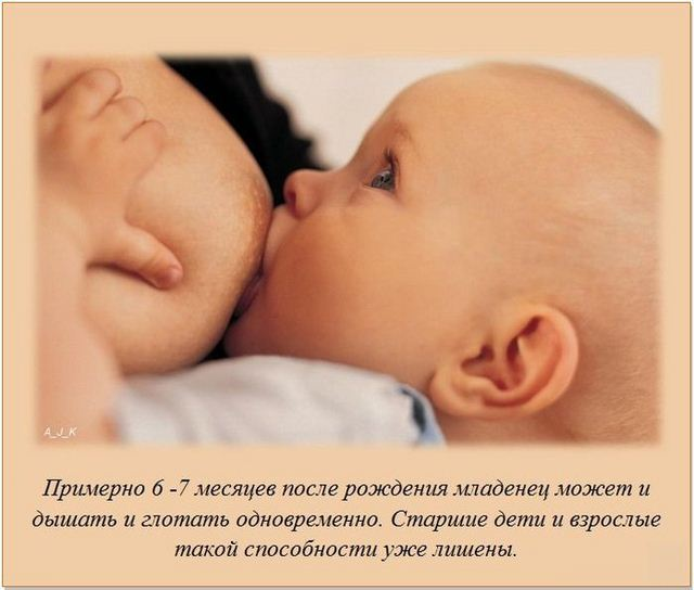 http://s.spynet.ru/uploads/posts/2012/0527/fakti_19.jpg